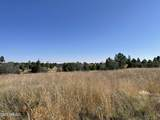 2253 Big Bear Circle - Photo 15
