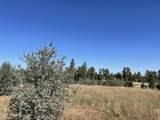 2253 Big Bear Circle - Photo 16