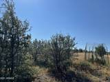 2253 Big Bear Circle - Photo 17