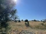2253 Big Bear Circle - Photo 9