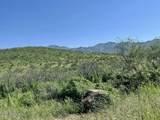 TBD Tejano Springs Rd - Photo 1