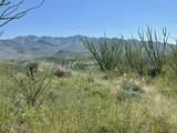 TBD Tejano Springs Rd - Photo 7