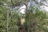1755 Rustic Timbers Lane - Photo 15