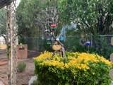 3699 Inca Dove Place - Photo 34