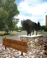 2355 Quarter Horse Trail - Photo 22