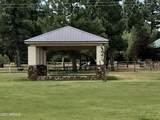 2355 Quarter Horse Trail - Photo 24
