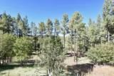 5518 Pine Drive - Photo 40
