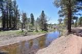 5518 Pine Drive - Photo 43