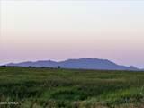 Toltec Valley West Lot 2, 41 Acres - Photo 2