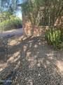 1720 Whittier Drive - Photo 2