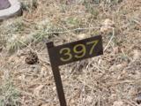 2862 Buck Circle - Photo 10
