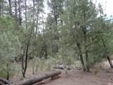 Parcel 2 Conifer Drive - Photo 4