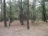 Parcel 2 Conifer Drive - Photo 5