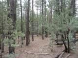 Parcel 2 Conifer Drive - Photo 7