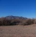 55XXX La Barranca Drive - Photo 19