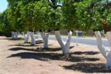 2061 Orchard - Photo 2