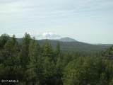 000 Alaska Mining Claim - Photo 4