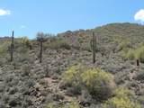 14507 Shadow Canyon Drive - Photo 8