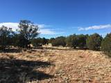 Lot 301 Peaceful Hill Road - Photo 10