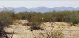 225xx Ocupado Drive - Photo 6