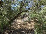22650 Metate Forest Trail - Photo 10