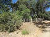 22650 Metate Forest Trail - Photo 12
