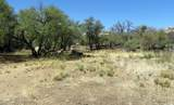 22650 Metate Forest Trail - Photo 13