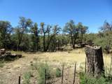 22650 Metate Forest Trail - Photo 14
