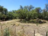 22650 Metate Forest Trail - Photo 15