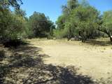 22650 Metate Forest Trail - Photo 16