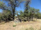 22650 Metate Forest Trail - Photo 19
