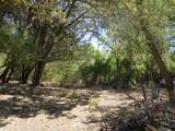 22650 Metate Forest Trail - Photo 2