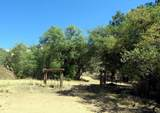 22650 Metate Forest Trail - Photo 20
