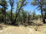 22650 Metate Forest Trail - Photo 21
