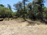22650 Metate Forest Trail - Photo 24
