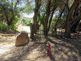 22650 Metate Forest Trail - Photo 25