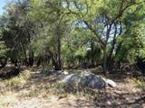 22650 Metate Forest Trail - Photo 4