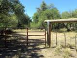22650 Metate Forest Trail - Photo 5