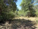 22650 Metate Forest Trail - Photo 7