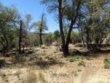 22650 Metate Forest Trail - Photo 8