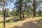 3124 Ancient Trail - Photo 10