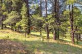 3124 Ancient Trail - Photo 4