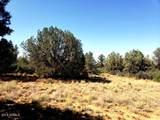 14825 Agave Meadow Way - Photo 3