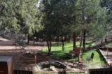 326 Chitwood Trail - Photo 47