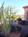 11263 Ajave Drive - Photo 55
