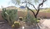 11263 Ajave Drive - Photo 79
