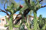 11263 Ajave Drive - Photo 93