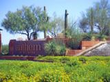 40533 Territory Trail - Photo 25