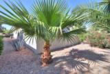 2391 Antigua Drive - Photo 41