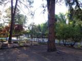 1108 Ponderosa Circle - Photo 39